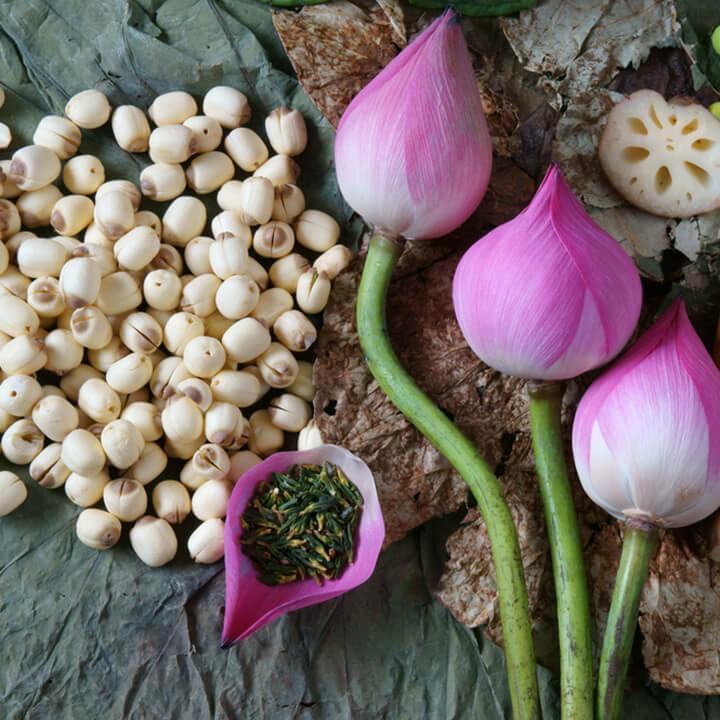 Hạt sen chứa nhiều dinh dưỡng như canxi, đạm